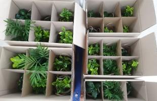 [후원] 수원시자원봉사센터 공기정화식물 후원